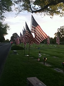 flags flying for Memorial Day in Richland