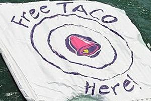 Free Taco Bell Taco