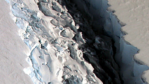 Larsen C Ice Shelf - Courtesy of NASA